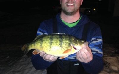 Potential New South Dakota State record Perch