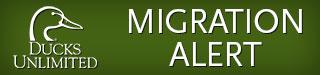 DU Migration Logo