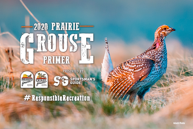 IT'S TIME: PRAIRIE GROUSE SEASONS ARE JUST AROUND THE CORNER By Pheasants Forever
